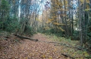 Дорога Мезмай - Водопады