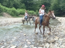 Конные прогулки в Никитино