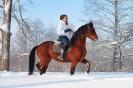 Прокат лошадей