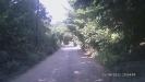 Дорога п. Перевалка - п. Никитино в горах