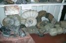 В музее камней