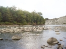 Аммониты на реке Белая, Адыгея