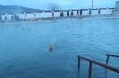 Общий басейн Аушигер