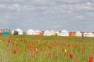 Шатры на Фестивале Тюльпанов, Калмыкия