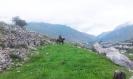 Местный житель на лошади